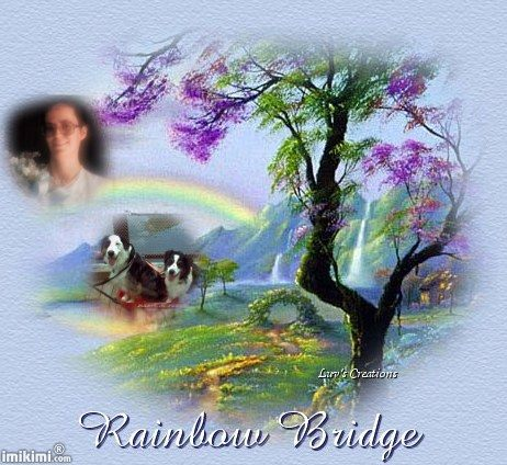 karen_nick_diamond_rainbowbridge.jpg